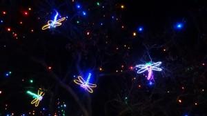 Zoo-Lights-Bugs-Denver
